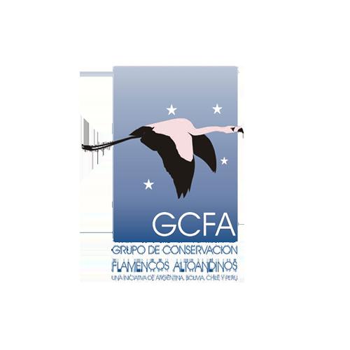 Andean Flamingo Conservation Group – GCFA